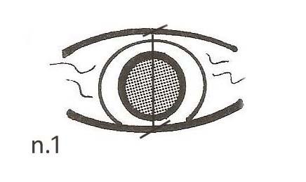 occhio-1-copy