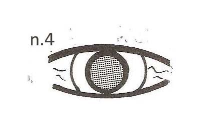occhio-4-copy